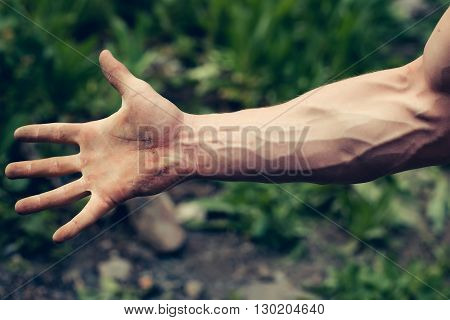 Muscular Hand With Veins