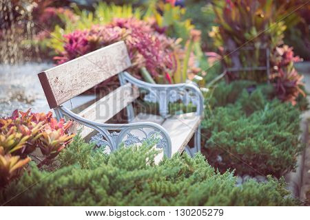old vintage bench in flowers garden, beautiful flower