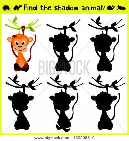 Children's developing game to find an appropriate shadow animal of the monkey. Vector illustration