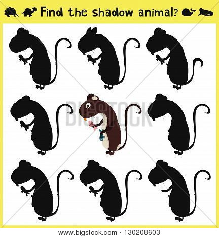 Children's developing game to find an appropriate shadow forest nutria. Vector illustration