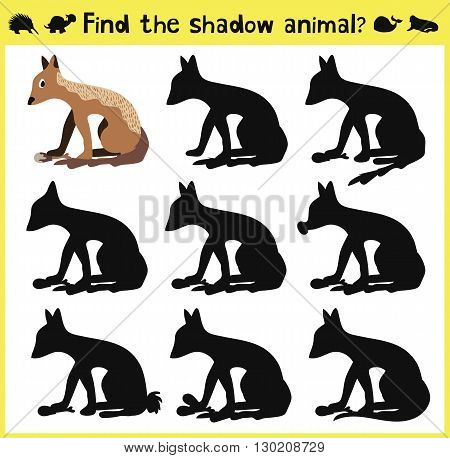 Children's developing game to find the proper shadow of a Jackal or wolf. Vector illustration