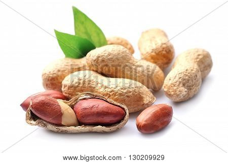 Peanuts isolated close up on white backgrounds