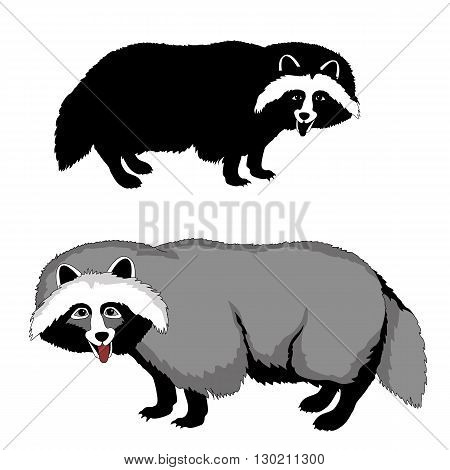 raccoon dog black silhouette pet realistic vector illustration