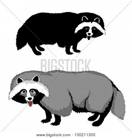 raccoon dog black silhouette pet realistic vector illustration