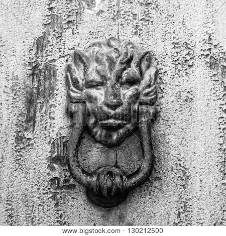 Horror house door, lion head knocker. Grayscale