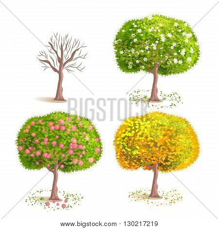 Set the isolated seasons trees. Deciduous blooming tree. Tree with yellow foliage. Tree with fruits. Cartoon style.