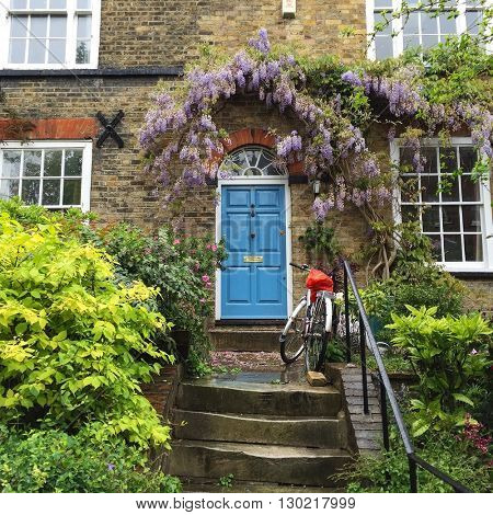 LONDON - MAY 18: Smart house entrance with blue front door, Wisteria and a bicycle on May 18, 2016 in Hampstead, London, UK.