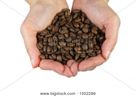 Hans With Coffee Beans