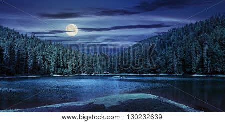 Lake Among The Forest In Mountains At Night