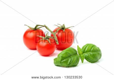 Cherry tomatoes with Basil sprig isolated on a white background.