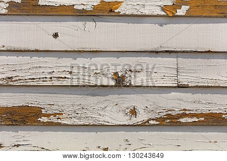 Cracking and peeling paint off of old wood sliding.