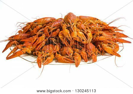 Bouquet of red boiled crayfish on a white background.