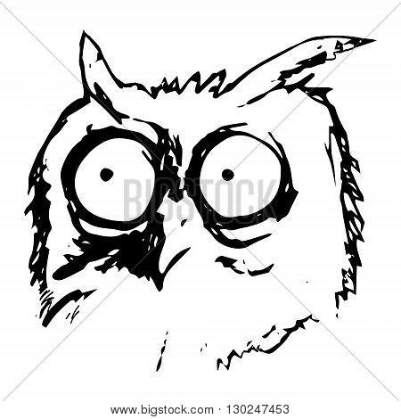 Graphic image of a bird with big eyes. Abstract owls pattern on a white background. Vector illustration
