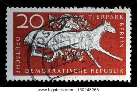ZAGREB, CROATIA - JULY 02: a stamp printed in GDR shows 10th Anniversary of Berlin ZOO, circa 1965, on July 02, 2014, Zagreb, Croatia
