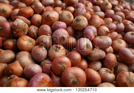 Onion-Pile Of onions / Stack Of onions-in the market.