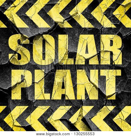 solar plant, black and yellow rough hazard stripes