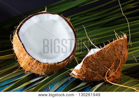 Halfs of coconut coconut palm tree leave