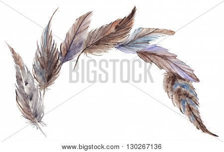 Watercolor gray grey blue brown feathers composition vector isolated