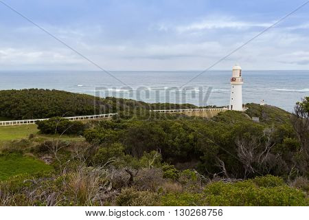 Walking path to the iconic Cape Otway lighthouse, Great Ocean Road, Victoria, Australia with deciduous trees during Autumn in foreground. It's Australia's oldest working lighthouse, famous attraction
