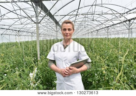 Portrait of agronomist standing in greenhouse