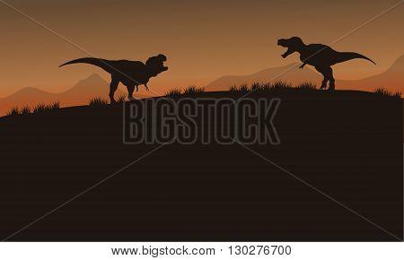 Scenery tyrannosaurus of silhouette in tthe fields