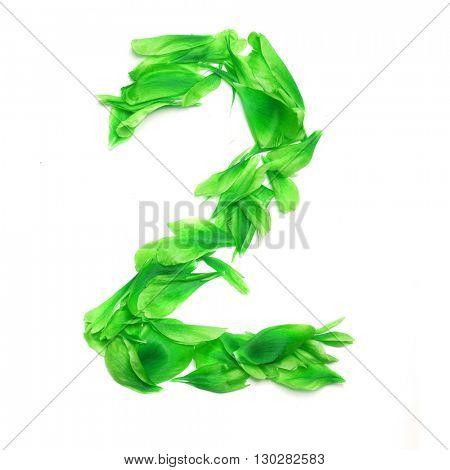 Green petals digits. Digit 2