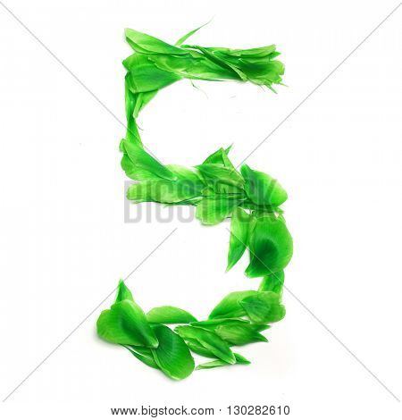 Green petals digits. Digit 5