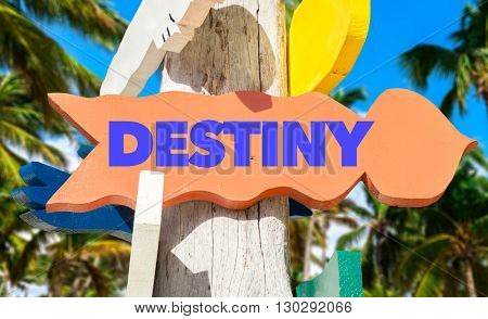 Destiny direction sign in a tree