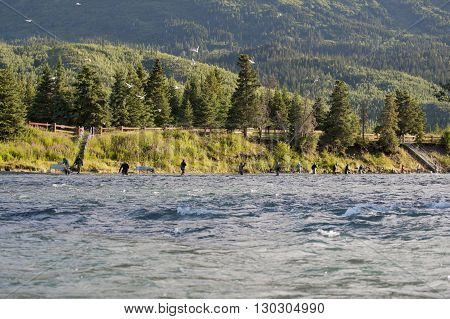 Alsaka River In Kenai Peninsula Full Of Fishermen