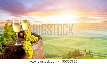 White wine with wooden barrel on vineyard in Tuscany, Italy