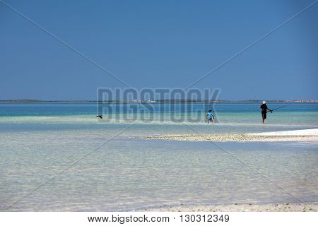 Father And Son Fishing Near The Shore