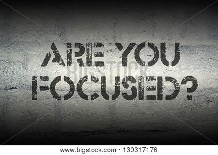 are you focused question stencil print on the grunge white brick wall