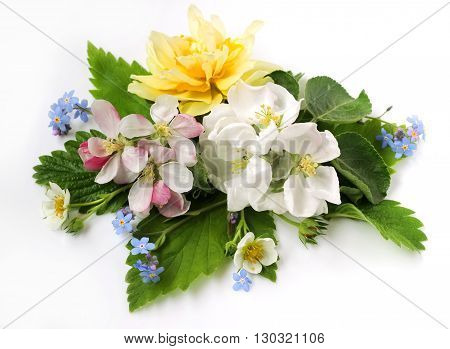 The composition of Apple flowers Narcissus forget-me-nots and leaves of currant and strawberry on a white background.