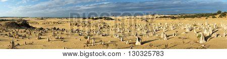 Pinnacles Park In West Australia