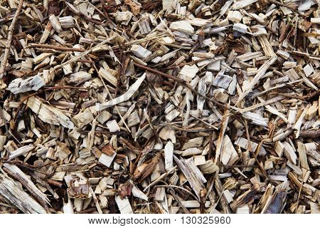 Close up of wood chippings. Good for a background texture.