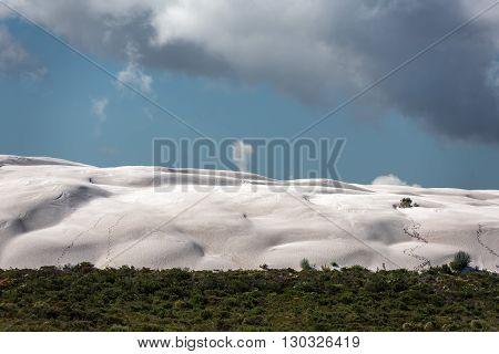 Australia Sand Dunes Into The Bush