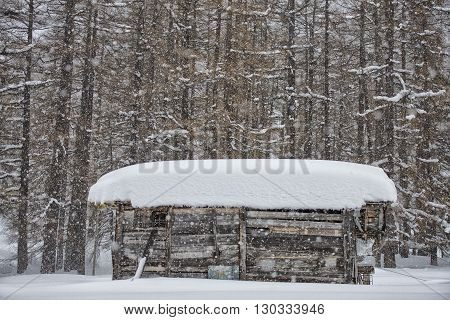 mountain wooden hut covered by snow detail
