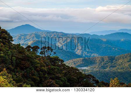 Sunrise Over Jungle In Cameron Highlands, Malaysia