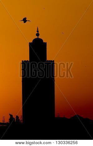 A Stork Silhouette On Marrakech Mosque Sunset View