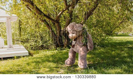 Lonely Teddy Bear seating on the swing