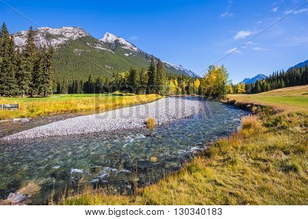 Stream with a pebbly bottom flows among the mountains. Magnificent picturesque valley in Banff National Park