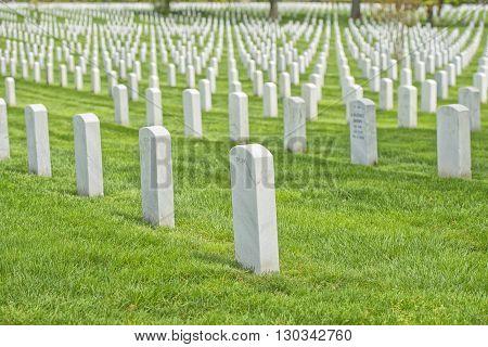arlington cemetery graveyard white tombstones detail close up