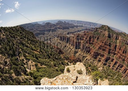 Grand Canyon North Rim View Landscape Panorama