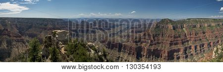 Grand Canyon View Panorama From North Rim