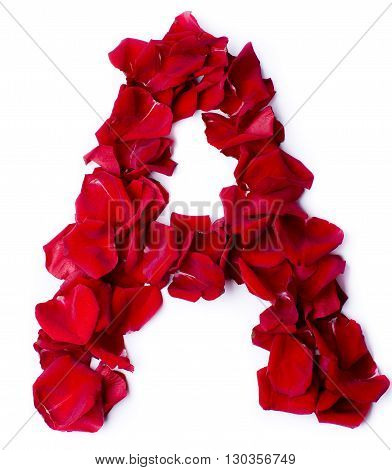 Alphabet A Made From Red Rose