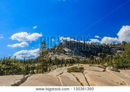 View At Tioga Pass, Yosemite National Park, Sierra Nevada, Usa