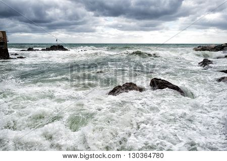 Sea In Tempest On Rocks Shore