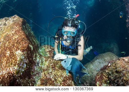Beautiful Latina Diver Girl While Touching A Fish