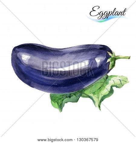 Watercolor vegetables eggplant isolated on white background