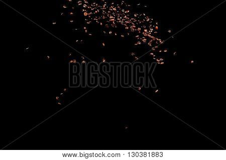 Flying coffee beans isolated on black background. Roasted coffee grains explosion.